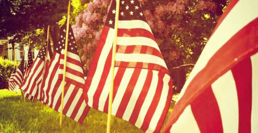 Seven American flags on rods placed in a line in the grass of a front yard with azalea bushes behind them.